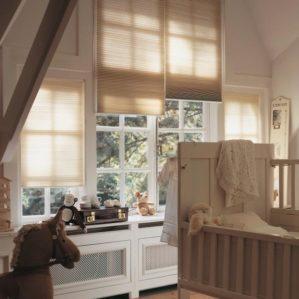 blinds_duette blinds